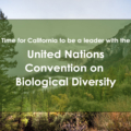 GEC Supports California's Participation in the UN Convention on Biological Diversity