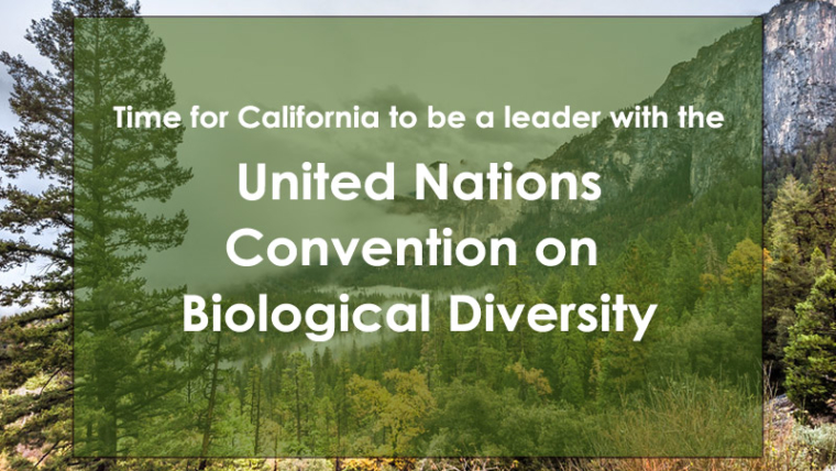 UN Convention on Biological Diversity