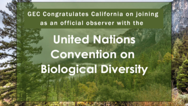 CA joins as official observer with UN Convention on Biological Diversity